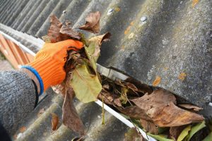 Gutter Cleaning in Davis, CA